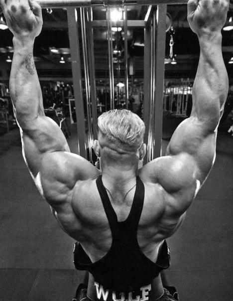 Упражнения для наращивания мышц